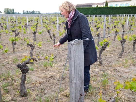Our wine tourguide