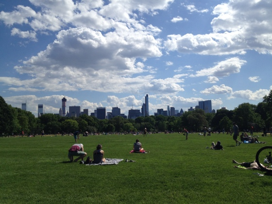 Great Lawn, Central Park | netflix & nutella